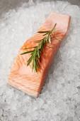 közeli lövés, piros hal, rozmaring ág tört jeget a szelet