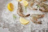 Photo close-up shot of raw shrimps with rosemary and lemon slices on crushed ice