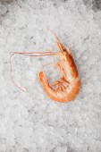 Photo top view of cooked prawn on crushed ice