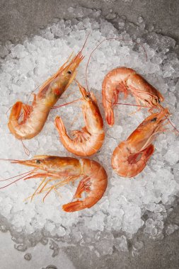 top view of cooked prawns on crushed ice