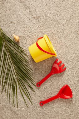 flat lay with colorful toys, seashell and green palm leaf on sand