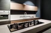 Interiér moderní kuchyně s kovem kamna