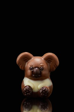 closeup shot of koala shaped chocolate on black background