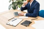 Oříznout záběr podnikatel pracuje na notebooku na pracovišti v úřadu