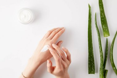 cropped image of woman applying cream on hands, aloe vera leaves and cream in container on white surface