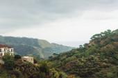 zelené stromy na kopcích v blízkosti malých domků v Savoca, Itálie