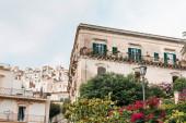nízký úhel pohledu na zelené stromy a rostliny v blízkosti starých budov v Modica, Itálie