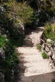 slunce na schodech v blízkosti zelených rostlin a stromů v Raguse, Itálie