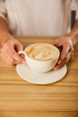 cropped view of woman holding cup with cappuccino