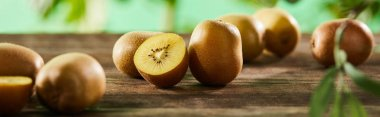 Panoramic shot of cut and whole kiwi on wooden surface stock vector