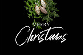 felső nézet fényes arany karácsonyi kúpok zöld thuja ágak elszigetelt fekete Merry karácsonyi illusztráció