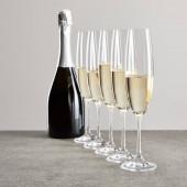 messa a fuoco selettiva di bicchieri di champagne con spumante vicino bottiglia isolato sul grigio