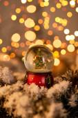 malá sněhová koule s vánoční stromeček stojící ve sněhu se zlatými světly bokeh