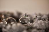 átlátszó karácsonyi labdák lucfenyő ágak hóban