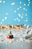 malý vánoční stromek ve sněhové kouli stojící na modré se smrkovými větvemi ve sněhu a rozmazanými světly