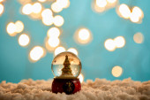 little christmas tree in snowball standing on blue with snow and blurred lights