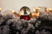 Fotografie dekorativní sněhová koule s vánočním stromečkem stojící na smrkových větvích ve sněhu se světly bokeh