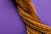 Top view of twisted brown hair on purple background
