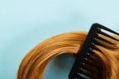 Top kilátás fésű barna haj kék háttér