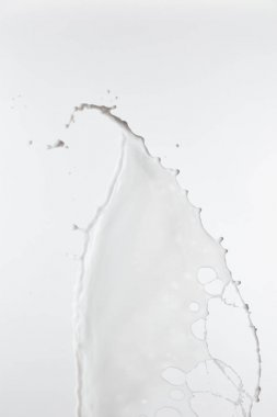 Pure fresh white milk splash with drops isolated on white stock vector