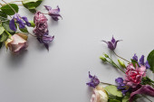 top view of violet and purple flowers on white background