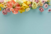 top view of spring flowers on blue background