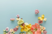 felső kilátás tavaszi virágok szétszórt kék háttér