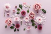 vrchní pohled na kvetoucí jaro Chryzantémy a růže s listy a okvětními lístky na fialovém pozadí