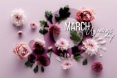 Fotografie vrchní pohled na kvetoucí jaro Chryzantémy a růže s listy a okvětními lístky na fialovém pozadí, ilustrace dne žen