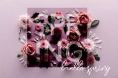 vrchní pohled na kvetoucí jaro Chryzantémy a růže s listy a okvětními lístky na fialovém pozadí, dobrý den jarní ilustrace