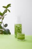 Palack és üveg felszeletelt uborkából készült itallal és növény szürke alapon