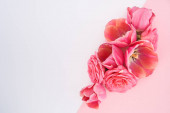 Fotografie top view of spring flowers on white and pink background with copy space