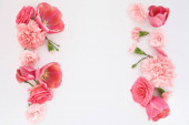 horní pohled na růžové jarní květiny na bílém pozadí s kopírovacím prostorem