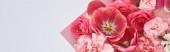 rózsák, tulipánok és szegfűk tetejére rózsaszín és fehér alapon, panorámás felvétel