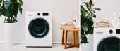 zöld növények kollázsa mosógépek közelében, dohányzóasztal törölközőkkel és mosószeres üvegekkel a fürdőszobában