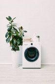 modern és fehér fürdőszoba növények közelében mosószer palack és törölköző mosógép