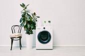 zöld növények közelében mosógép palack közelében szék törölközővel