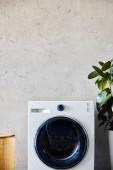szennyes kosár közelében mosógép és zöld növény modern fürdőszobában