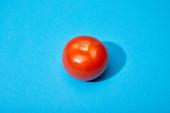 Fotografie zralé čerstvé rajče na modrém pozadí