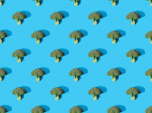 top view of fresh green broccoli on blue background, seamless pattern