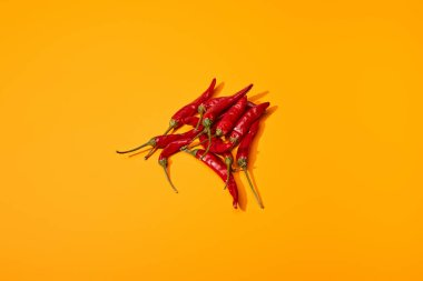 Top view of red spicy chili peppers on orange colorful background stock vector