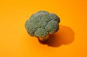 friss zöld brokkoli narancs alapon