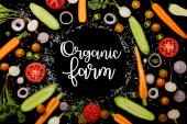 Draufsicht auf frische Gemüsescheiben mit Salz mit Bio-Bauernhof-Illustration isoliert auf schwarz