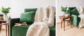 Photo collage of green sofa with pillow, book and blanket near wooden coffee table with plants