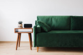 Photo green sofa with pillow and wooden coffee table with plant and alarm clock