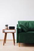 zelená pohovka s polštářem a dekou u dřevěného konferenčního stolku s rostlinami