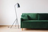 Photo green sofa with pillow near metal modern floor lamp