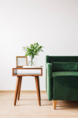 green sofa near wooden coffee table with plant, books and photo frame