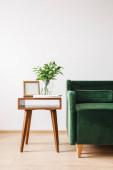 zelená pohovka u dřevěného konferenčního stolku s rostlinou, knihami a fotorámečkem
