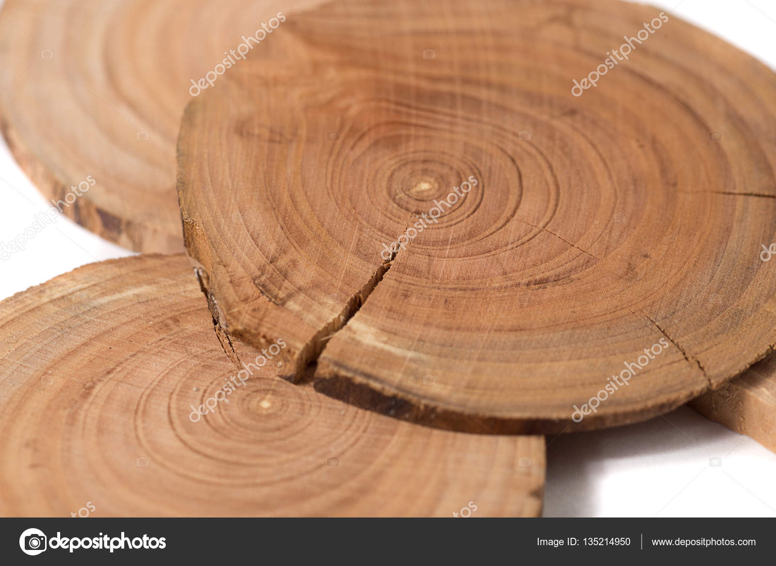 Concept Dendrochronology. Tree Trunks Clearly Visible Annual Rings, Round  Slices Of Trees, White Background U2014 Photo By Bumi100